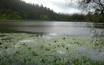 caminata-ecologica-laguna-sagrada-ubaque-ecoturismocolombia